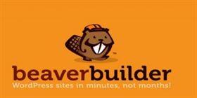 Beaver Builder Pro v2.2.4.3